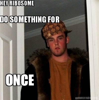 Meme Creator - HEY RIBOSOME DO SOMETHING FOR ONCE