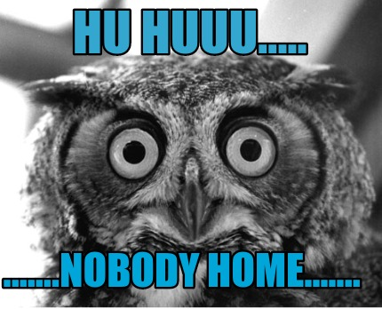 Meme Creator - Hu Huuu.........nobody home.......